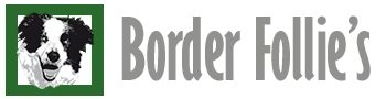 logo-BorderFollies2-gris
